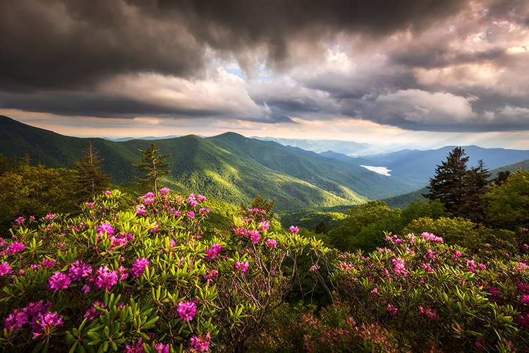 Blue Ridge Parkway Landscape Photography Asheville NC Prints