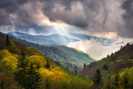 Great Smoky Mountains Scenic Landscape