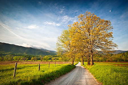 Scenic Cades Cove Great Smoky Mountains Photography