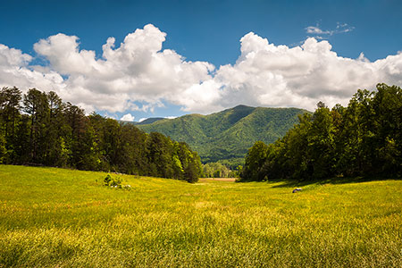 Cades Cove Great Smoky Mountains Landscape