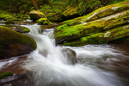 Scenic Outdoor Landscape Photography Gatlinburg TN