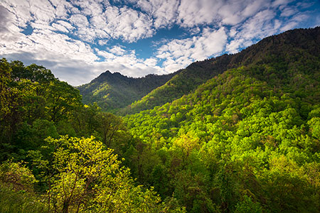 Gatlinburg TN Scenic Mountains Fine Art Landscape
