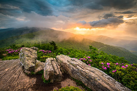 Roan Mountain Appalachian Trail Scenic Landscape